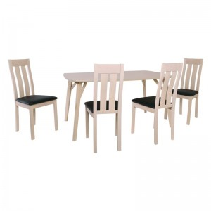 ALLEN-REGO Set (Τρ150x90cm+4 Καρ) White Wash/PVC Μαύρο