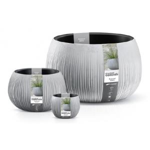 beton bowl